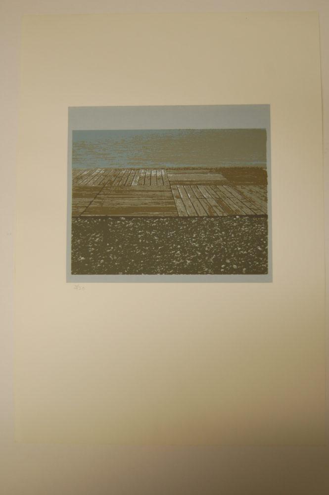Sea Shingle Boards