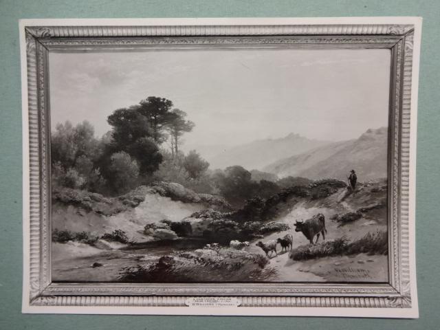 A Dartmoor Stream near Ildford
